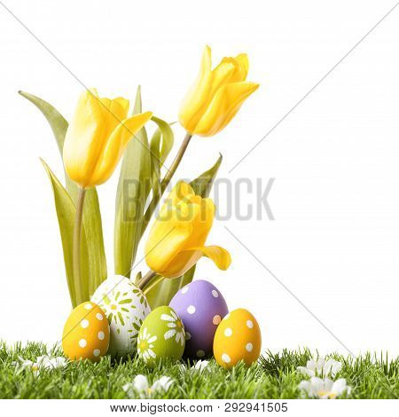 Easter Eggs With Yellow Tulips In Grass