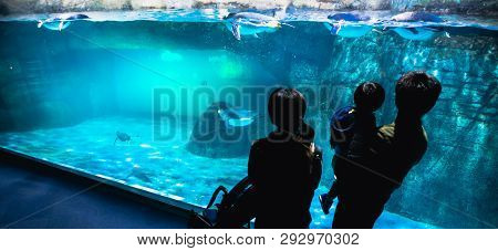 Yokohama,japan March 13,2019 Family Standing And Looking At A Group Of Emperor Penguins In The Displ