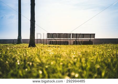 Two Empty Benches In A Park On A Sunny Day. Serenity Concept.