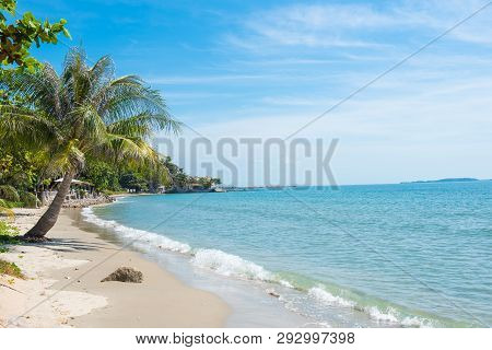 Palm And Tropical Beach In Thailand.sea And Sand.