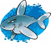 A cartoon vector illustration of the odd looking and potentially dangerous Oceanic White Tip Shark. Part of a series of Various shark species. poster