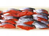 Raw meat of fresh fish kept in a tray poster