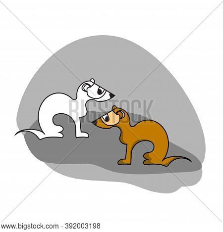 Two Ferrets, Set Of Two Animals In Flat Style