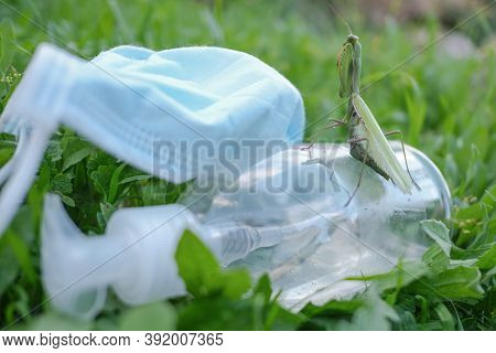 Praying Mantis Living On Discarded Medical Face Mask And Hand Sanitizer Dispenser Pollution.contamin