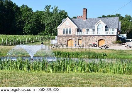 Clinton, Ct - Jul 4: Chamard Vineyard In Clinton, Connecticut, As Seen On July 4, 2020.