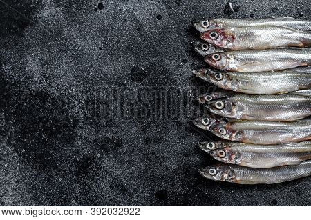 Fresh Raw Sea Small Fish Smelt. Black Background. Top View. Copy Space