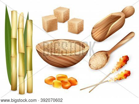 Cane Sugar Set With Isolated Images Of Sand Sugar In Wooden Plate Spoon Bail And Candy Sweets Vector