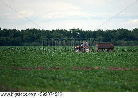 Tractor Work In The Field Tractor Growth, Monoculture.