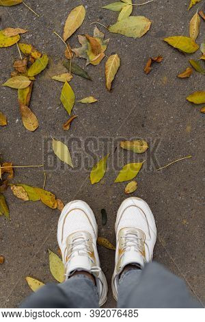 Top View Of Legs In White Sneakers On Road With Yellow Leaves