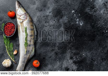 Raw Zander, Walleye Fish With Herbs. Black Background. Top View. Copy Space