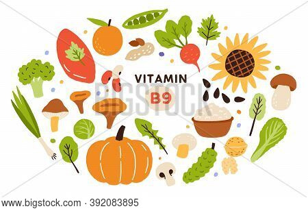 Collection Of Vitamin B9 Sources. Food Enriched With Folatin. Dairy Product, Fruits, Vegetables And