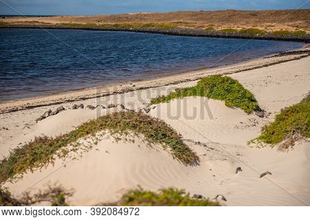 Dunes On The Fuerteventura Nature Trail Gr 131 From Corralejo To Morro Jable In Summer 2020. On The