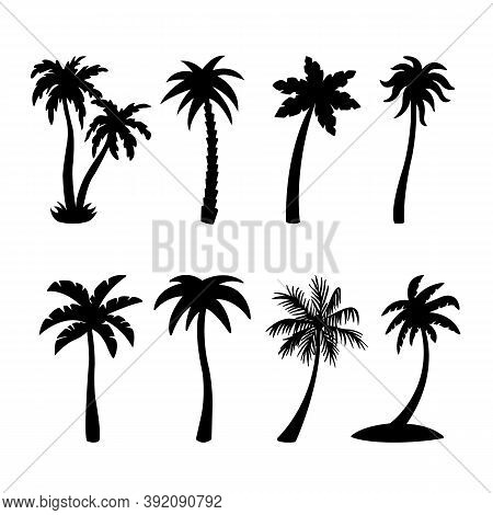 Palm Tree Silhouettes Set Isolated On White Background, Vector Illustration. Palm Trees Icons Collec