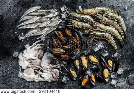 Raw Seafood Tiger Prawns, Shrimps, Blue Mussels, Octopuses, Sardines, Smelt. Black Background. Top V