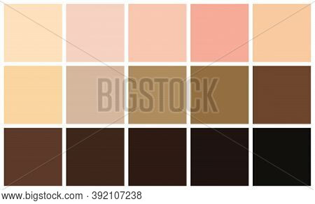 Human Skin Tones Color Palette Set. Skin Color From The Lightest To Darkest Brown Hues, Coloring Of