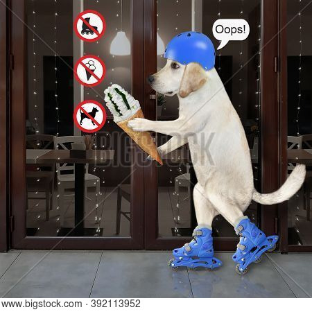 A Dog In A Blue Helmet With A Cone Of Ice Cream Is Rollerblading Near The Entrance To A Restaurant W