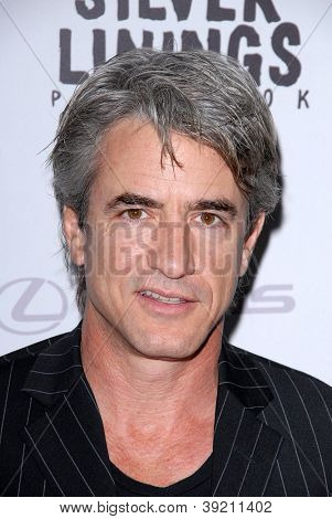 LOS ANGELES - NOV 19:  Dermot Mulroney arrives to the 'Silver Linings Playbook' LA Premiere at Academy of Motion Picture Arts and Sciences on November 19, 2012 in Beverly Hills, CA