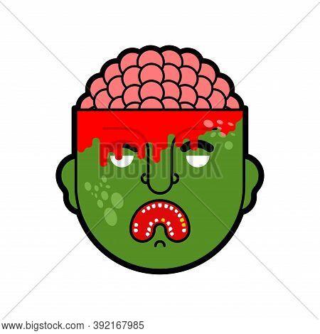 Zombie Head And Brains Isolated. Zombi Head Inside Brain
