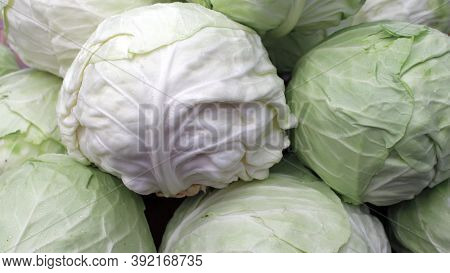 A Group Of Cabbage. Cabbage Background, Fresh Cabbage, Healthy Food.