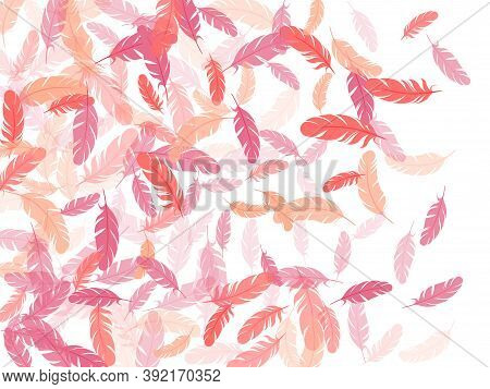 Romantic Pink Flamingo Feathers Vector Background. Falling Feather Elements Soft Vector Design. Soft