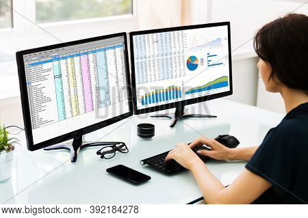 Electronic Spreadsheet On Analyst Auditor Computer Screen