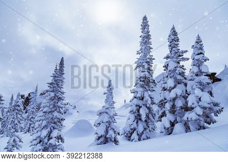 Winter Landscape With Snow Falling, Trees In Snow And Blue Sky. Sheregesh Ski Resort In Russia, Loca