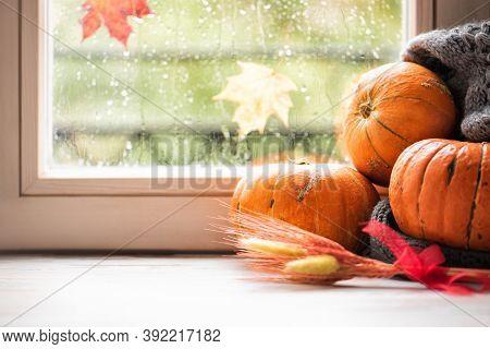 Pumpkins On The Sill Window, Rainy Weather Outside. Autumn Seasonal Decor