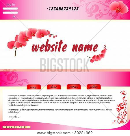 Website Orchid