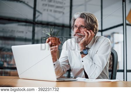 Bored Mature Businessman With Grey Hair And Beard In Formal Clothes Is In The Office Against Laptop.