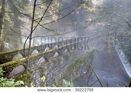 Whatcom falls and the historic bridge spanning Whatcom Creek in the misty, morning light. Bellingham, Washington. poster