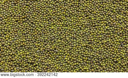 Background From Mung Bean Or Green Gram, One Of The Best Plant-based Sources Of Protein. Very Popula