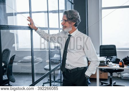 Mature Businessman With Grey Hair And Beard In Formal Clothes Is In The Office Touching Glass.