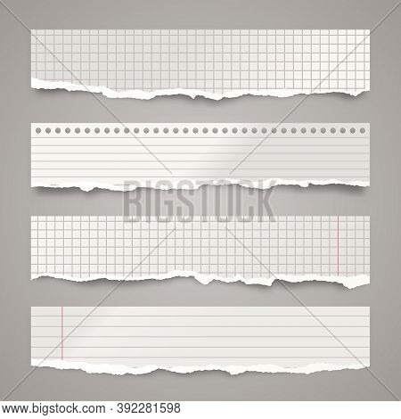 Ripped Paper Strips. Realistic Crumpled Paper Scraps With Torn Edges. Lined Shreds Of Notebook Pages