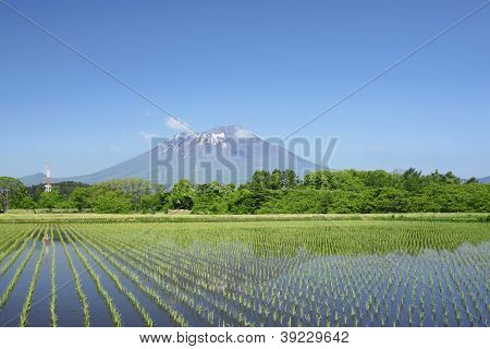 Mt.iwate And Pastoral Landscape