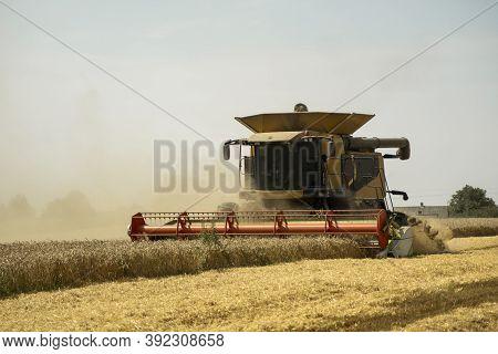 Combine Harvester Agriculture Machine Harvesting Golden Ripe Wheat Field. Agriculture. Combine Harve