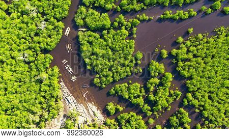Mangroves In A Swampy Area On A Tropical Island. Mangrove Landscape, Mindanao, Philippines.