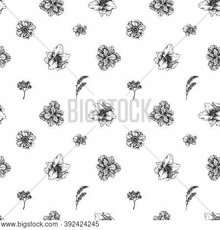 Seamless Pattern With Black And White Anemone, Lavender, Rosemary Everlasting, Phalaenopsis, Lily, I