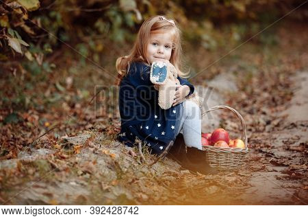 Beautiful Young Girl In The Park With Apples. Beautiful Girl Harvests Apples. The Child Holds Apples