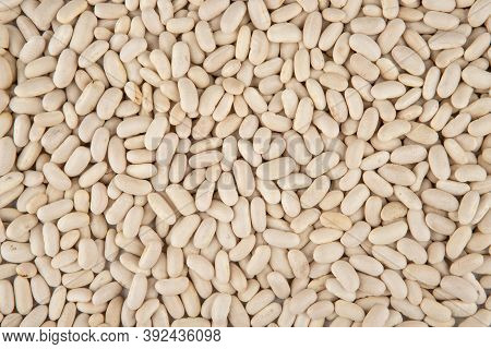 White Beans Texture - Bean Seeds Top View And Closeup