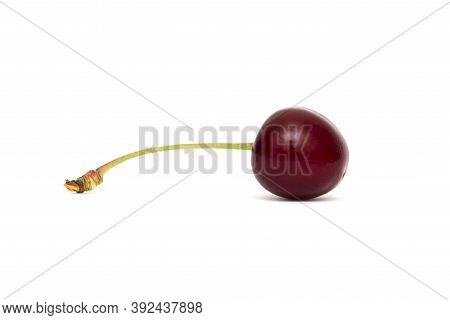 Sweet Cherry Isolated On A White Background.. Cherry On White Background