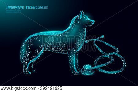 Veterinary Clinic Dog Pet Standing Alone. Low Poly Polygonal 3d Dog Silhouette Companion. Animal Med