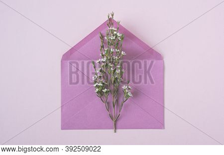 Top View Closeup Of White Delicate Flowers In Bloom On An Open Vintage Pink Paper Envelope On Beige