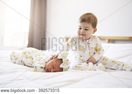 A Little Brother With Her Newborn Baby Toddler Kid Meeting New Sibling