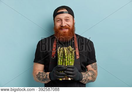People And Healthy Nutrition Concept. Cheerful Foxy Bearded Man Holds Bunch Of Asparagus, Wears Blac