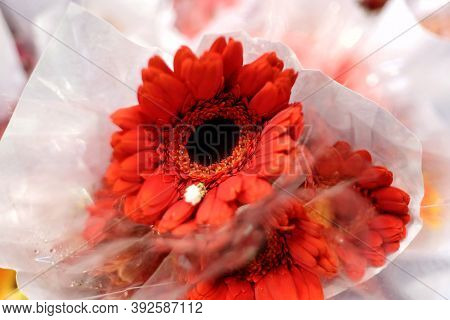 Blurred Red Gerbera Flower Blossom In A White Paper Packaging And Selling At The Flora Market