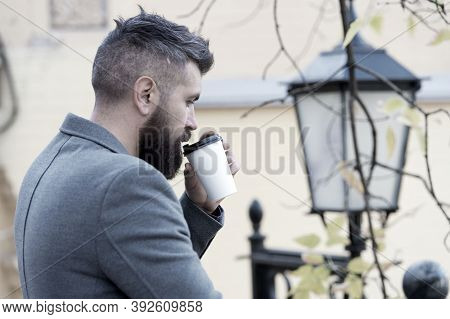 Businessman Bearded Guy Drink Coffee Outdoors. Hipster Hold Paper Coffee Cup And Enjoy Park Environm