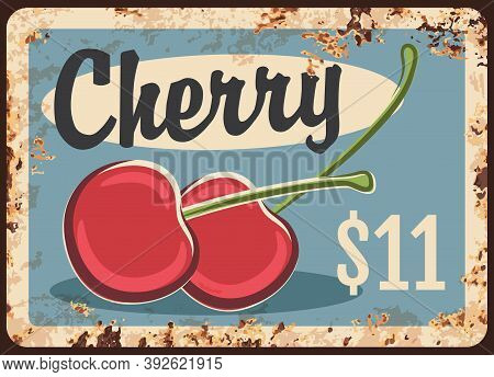 Rusty Metal Plate With Cherry, Vector Vintage Rust Tin Sign With Ripe Sweet Cherries, Price Tag For