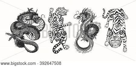 Japanese Dragon. Asian Japanese Tiger. Mythological Animal Or Traditional Reptile. Symbol For Tattoo