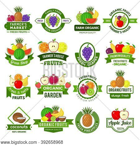 Fruits Logos. Decoration Badges With Healthy Fruits Fresh Farm Eco Natural Products Market Ads Vecto