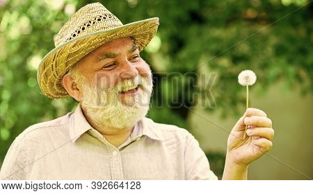 Peace Of Mind. Harmony Of Soul. Peaceful Grandpa Blowing Dandelion. Happy And Carefree Retirement. G